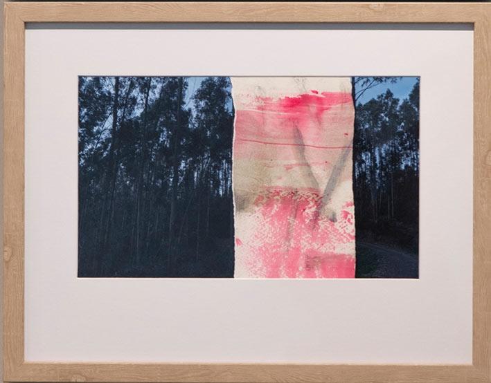 IreneCruz-Victor-Alba_Symbiosis-NaturaeA2_óleo-y-collage-fotografía-papelRC--30-x-40-A2ww
