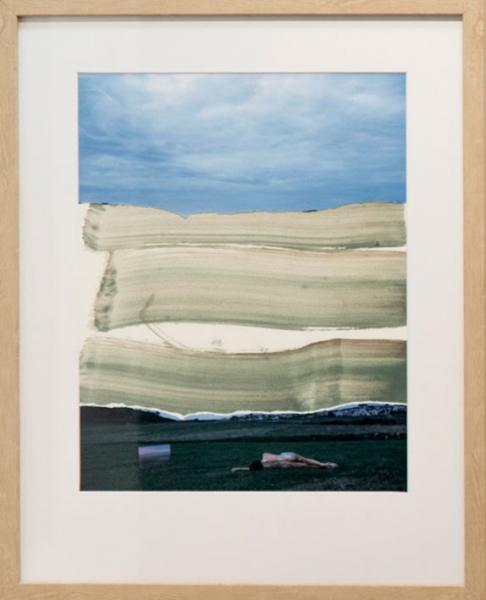 IreneCruz-Victor-Alba_Symbiosis-NaturaeB1_óleo-fotografía-papelRC--30-x-40-B1ww