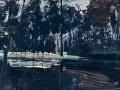 IreneCruz-VictorAlba_SimbiosisNaturae69_Fotografía-y-pintura_100x150_2016_3500_ww