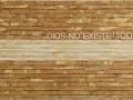 NachoAngulo_Dios-no-existe-todavia_TencnicaMixta-en-madera_55x177_2018_8000ww