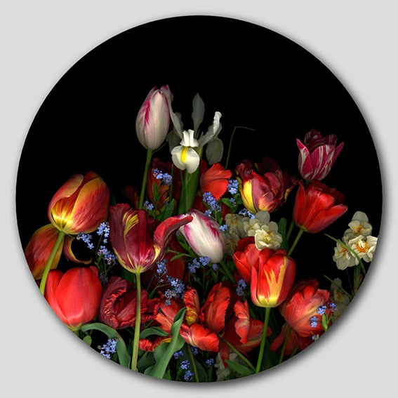 Espiral_Metropol_CarmenVdEynde_100x100_Tulip_NarcYnomeolv